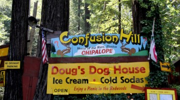 #14 – Campbell Bros. World Famous Confusion Hill