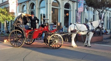 #44 – Horse-Drawn Carriage Rides