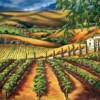 Visit an Art Gallery in Wine Country