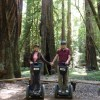 Tour Wine Country and Redwoods on a Segway