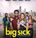 Nonton The Big Sick 2017 Indonesia Subtitle