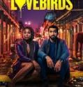 Streaming Film The Love Birds 2020 Subtitle Indonesia