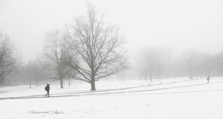 snow___fog_by_eszk-d5whs97