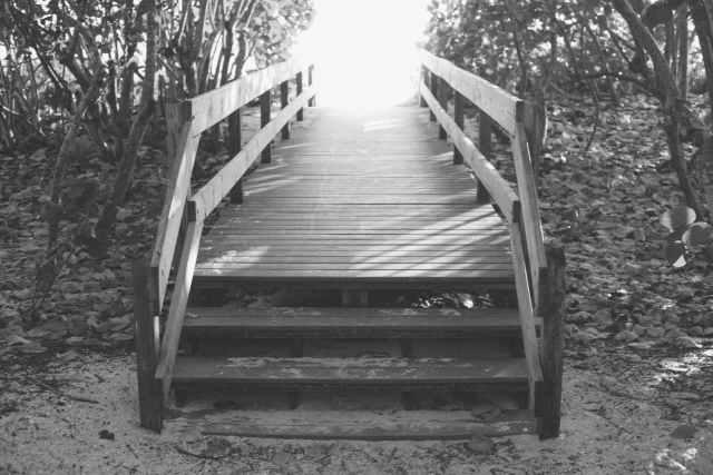 black and white boardwalk bridge fence