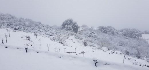 χιόνια και άλλα στο οροπέδιο Λασιθίου