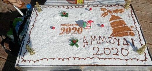 Οι χειμερινοί κολυμβητές έκοψαν τη πίτα τους