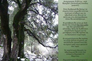 Αζιλακόδασος, πορεία