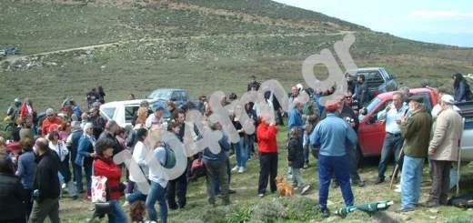 Διαμαρτυρία στη Θρυφτή, κατά βιομηχανικών ΑΠΕ