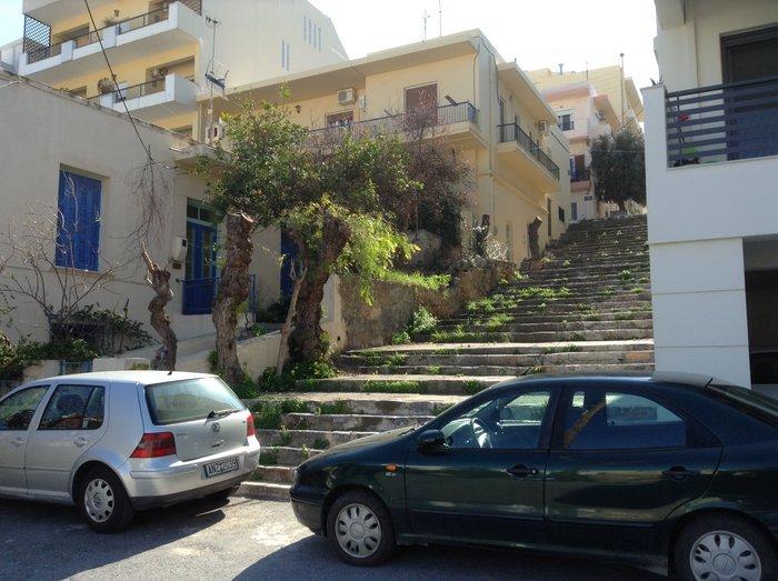 Πιο κάτω από το σπίτι των Βιδάκηδων στα σκαλιά της Τσελέπη αποκεφαλίστηκε άλλη μια δενδροστοιχία