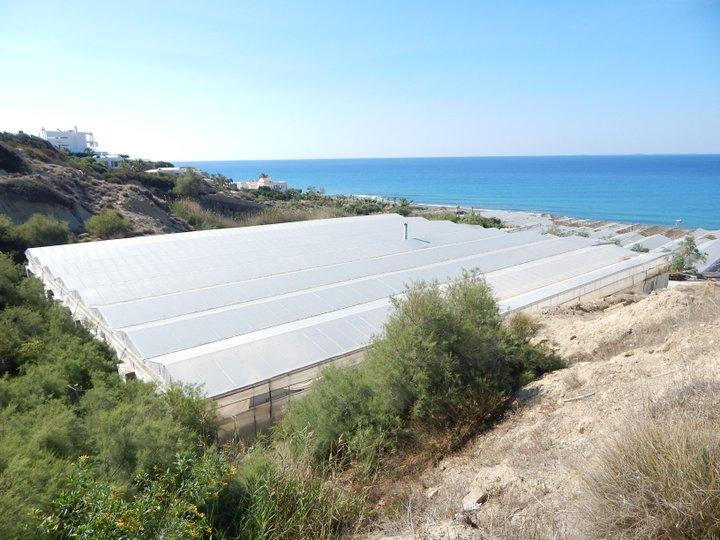 Η Περιφέρεια Κρήτης ζητεί την ένταξη όλων των νέων γεωργών στο πρόγραμμα «Αγροτικής Ανάπτυξης Ελλάδας 2014-2020»