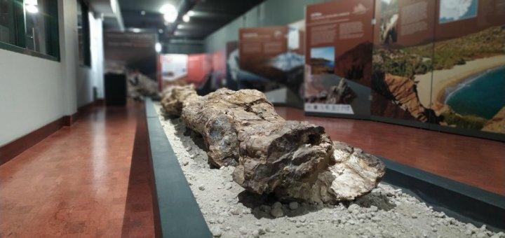Μνήμες Γαίας: Παγκόσμια Γεωπάρκα UNESCO Ελλάδας-Κύπρου