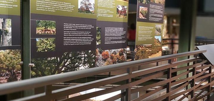 Το Μουσείο Φυσικής Ιστορίας Κρήτης ανοίγει ξανά τις πόρτες του