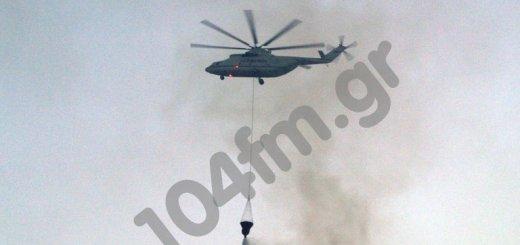 καταστροφικές πυρκαγιές αποζημίωση πληγέντων παρέμβαση Μαριά