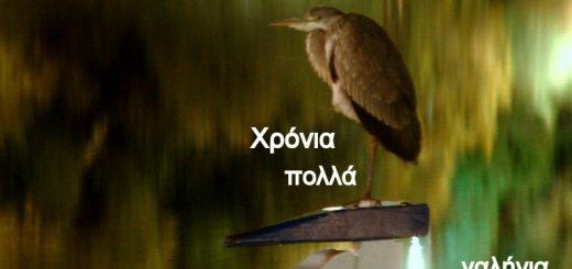 X-mas2011