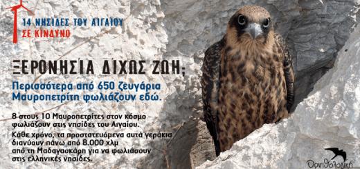 Αρνητική η γνωμοδότηση για εγκατάσταση ανεμογεννητριών σε νησίδες του Νότιου Αιγαίου!