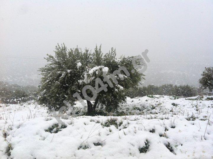 ένα τοπίο από τον πρόσφατο χιονιά