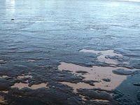 Μολυσμένη με πετρέλαιο θάλασσα