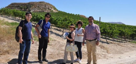 Ιάπωνες επαγγελματίες κρασιού στη Κρήτη