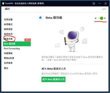 PureVPN Windows Beta 隧道分离功能