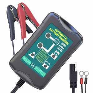 LST Trickle Battery Charger review