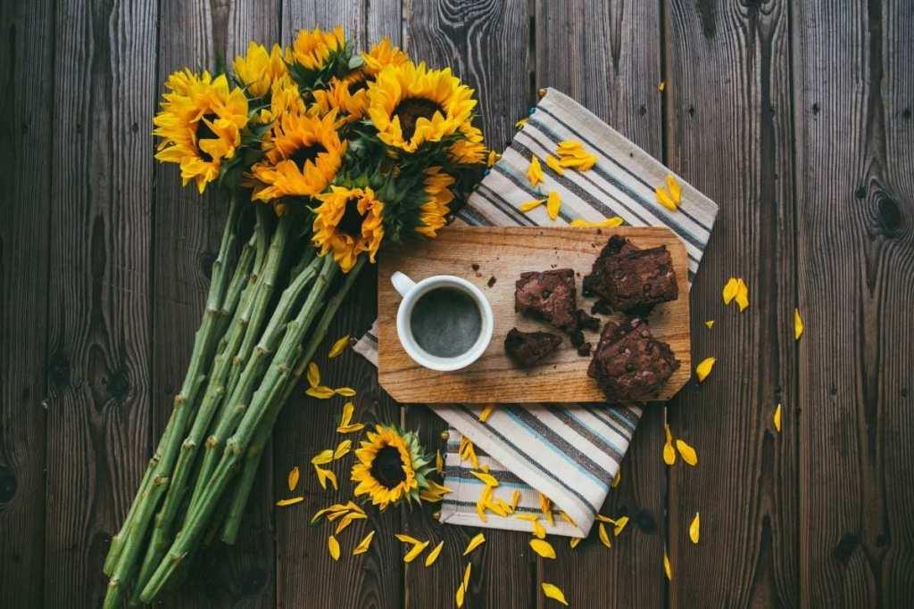 ayçiçekleri, filtre kahve ve kek