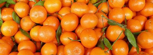 MandarinOrangescrop 2