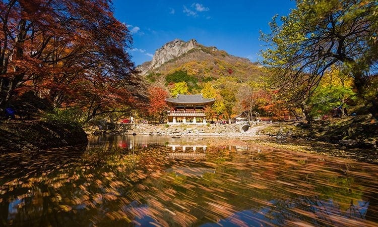 Naejangsan Mountain | Jeongeup, Jeollabuk-do
