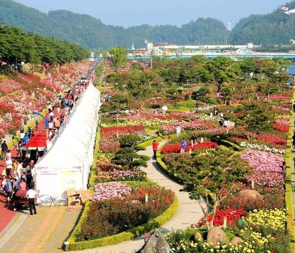 Samcheok Rose Park | Samcheok-si