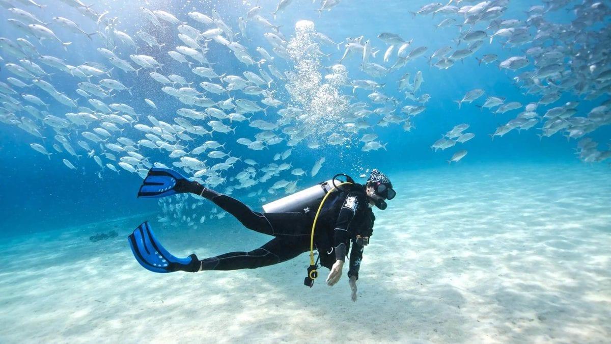 The 9 Best Busan Beach Activities To Do This Summer scuba diving