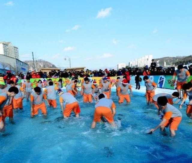 Winter Activities In Korea Pyeongchang Trout Festival