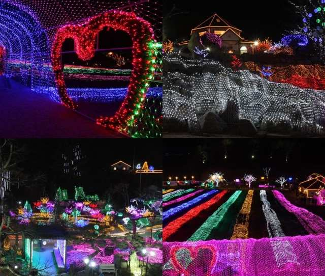 Winter In South Korea Activities Light Fairy Tale Story Festival Of Herb Island