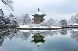 where to go in the winter activities in korea