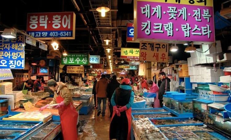 tips on moving to korea learn korean