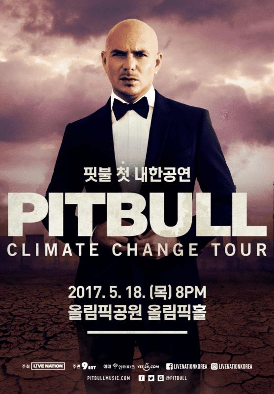 pitbull in korea