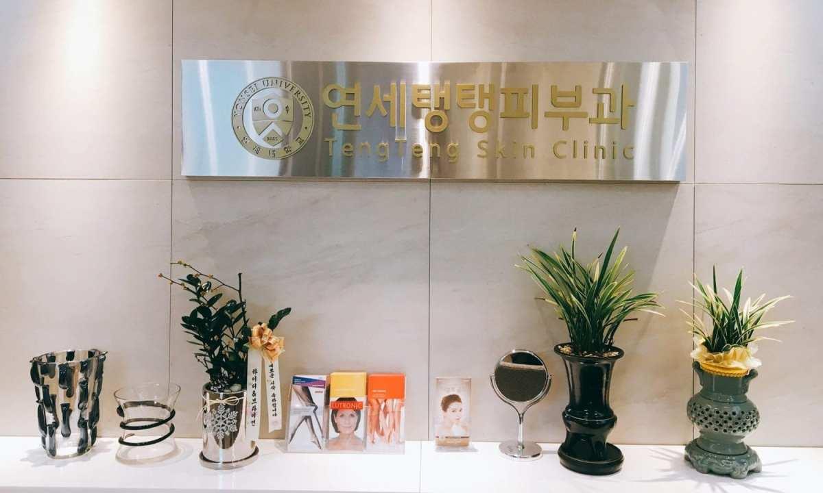 Teng Teng Skin Clinic Dermatologist Seoul
