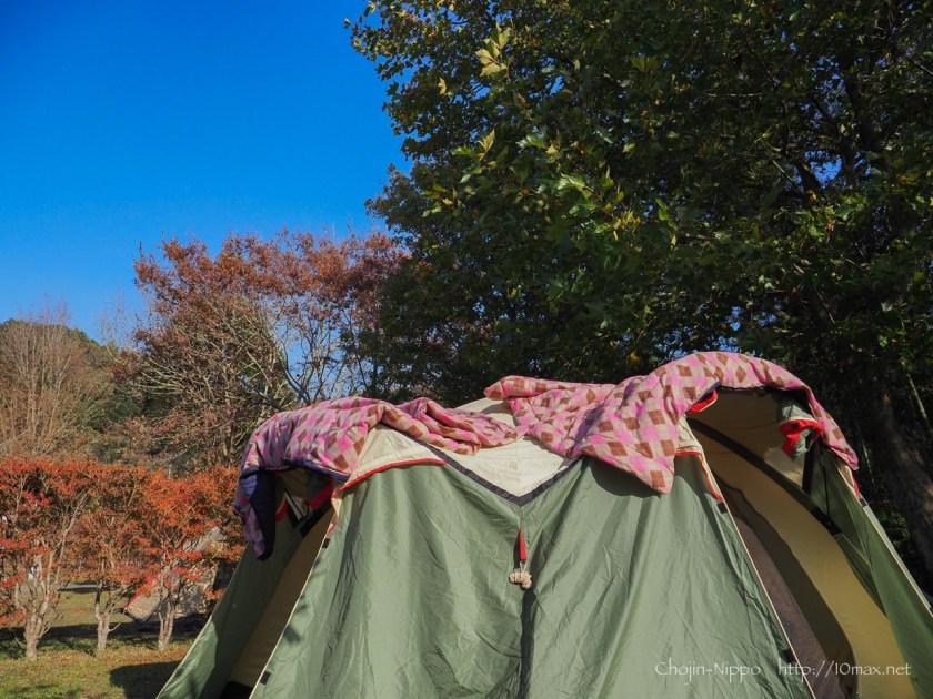 稲ヶ崎キャンプ場, North Eagle(ノースイーグル) テント Four Leaf クローバードーム300