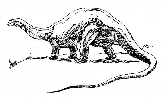 Dinosaur_-_brontosaurus_(PSF)