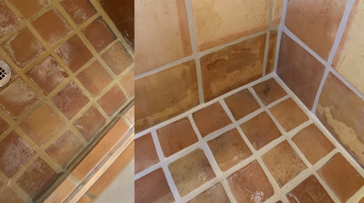 How to Remove Mold from Dry wall & Floor
