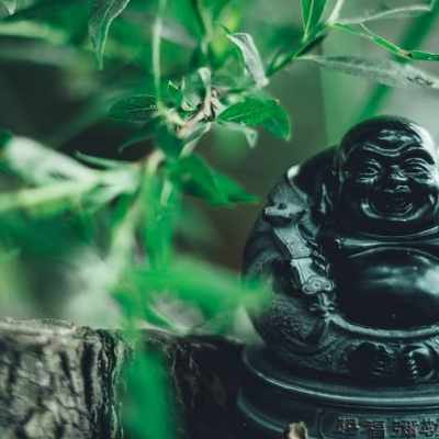 Everything you Need to Know about the Famous Laughing Buddha