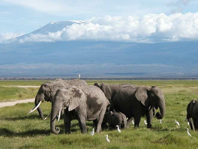 Most Famous Natural Landmarks In Africa: Mount Kilimanjaro, Tanzania
