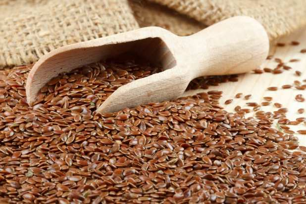 Most Nutritious Seeds - Flax Seeds