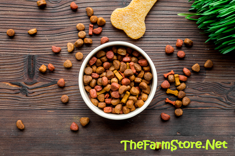 BEST DOG FOOD FOR LARGE BREED PUPPIES