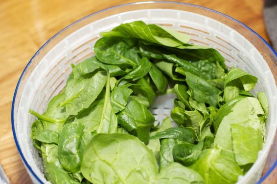 Quiche met spinazie 28