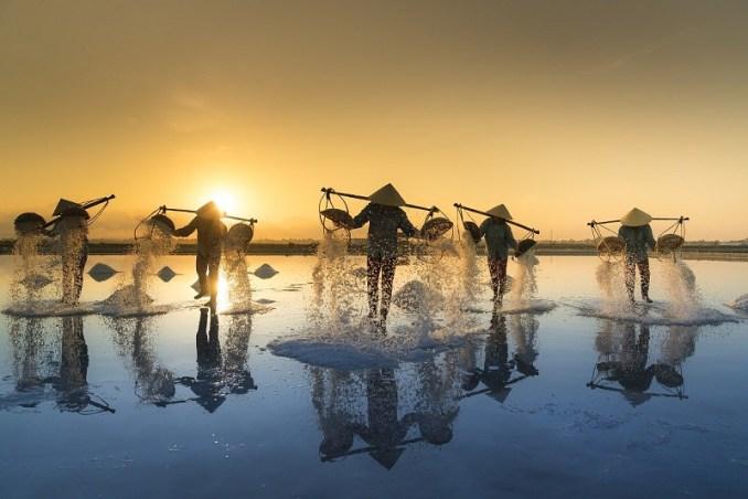 Vietnamiens en train de récolter du sel