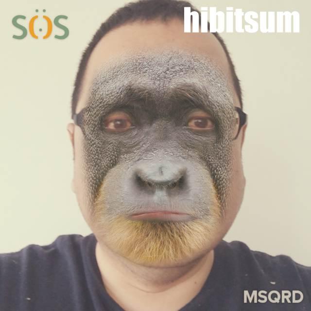 hibitsum_JPEGイメージ-EFCD64A912B1-1