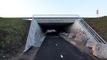 diemerbostunnel350