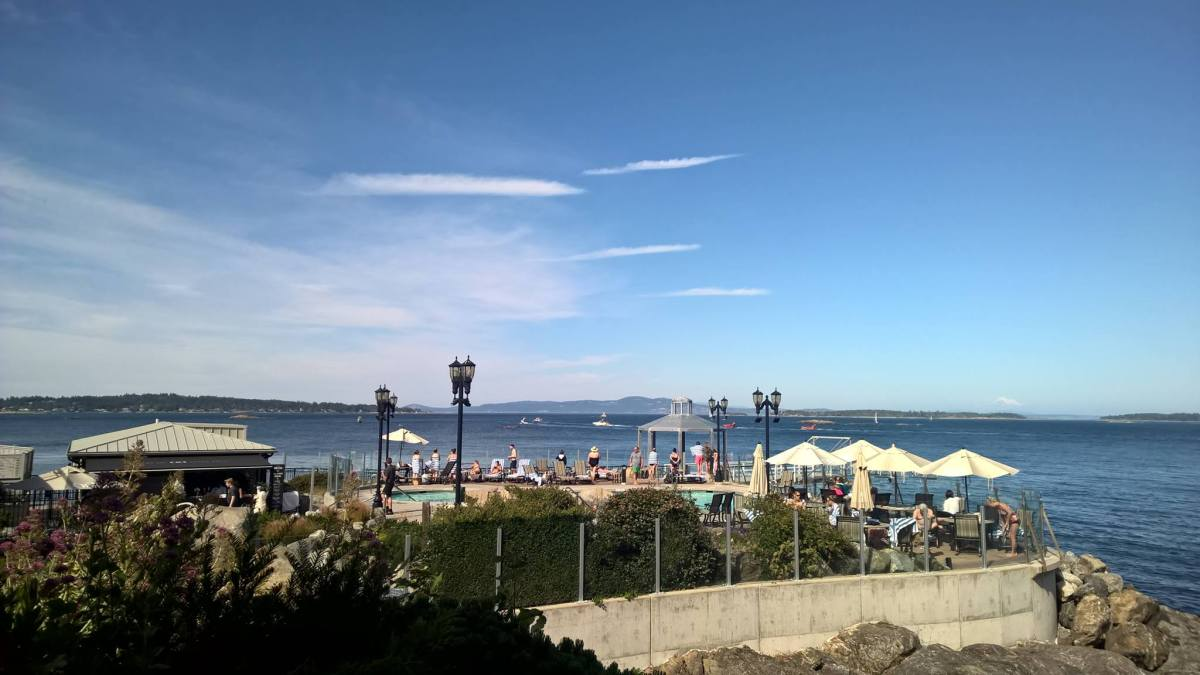 2017-7-8 : ORCAS in Oak Bay