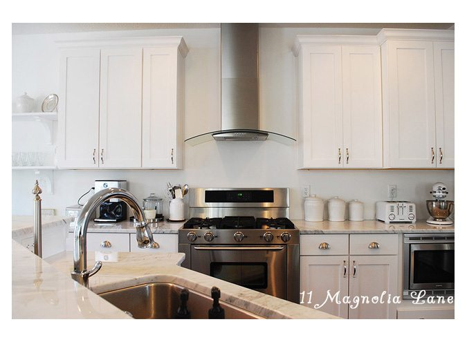 White kitchen with stainless and marble