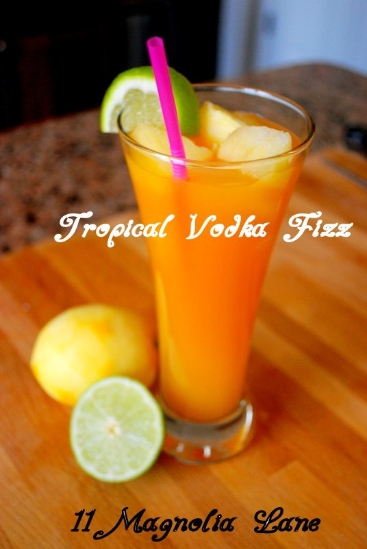 Orange Guava Vodka Fizz Recipe