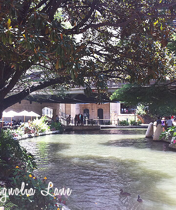 Perfect Weekend Getaway--The San Antonio Riverwalk